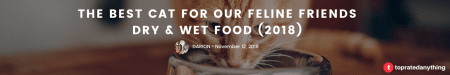 best wet and dry cat food