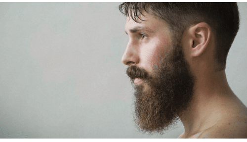 cover image for growing a beard